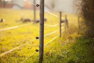 livestock electrical fencing installers